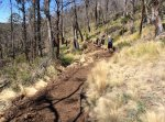 Meehan Ranges Trail Work