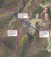Glenorchy MTB Park Work, Source: Hannah Sandler, Environment Officer, GCC