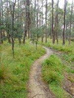 Trevallyn Reserve