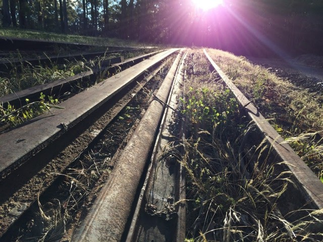 Both Parties commit to North East Rail Trail Grant